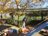 10 ноября в дошкольном учреждении прошел  осенний субботник  по благоустройству.